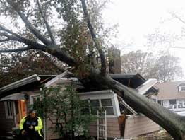 Wind Damage Restoration in Washington