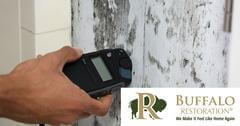 Mold Removal in Twin Bridges, MT