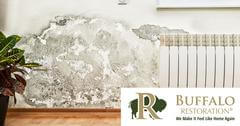 Mold Remediation in Gardiner, MT