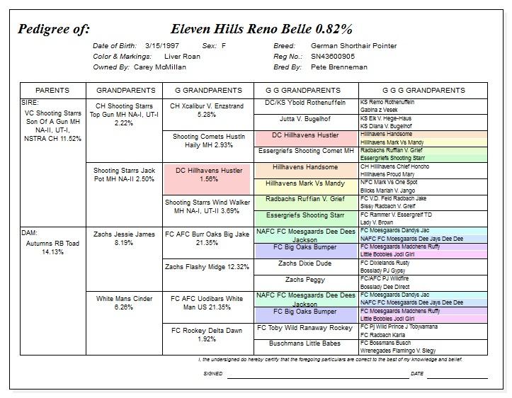 Pedegree for Eleven Hills Reno Belle