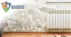Professional Mold Remediation in West Carrollton, OH