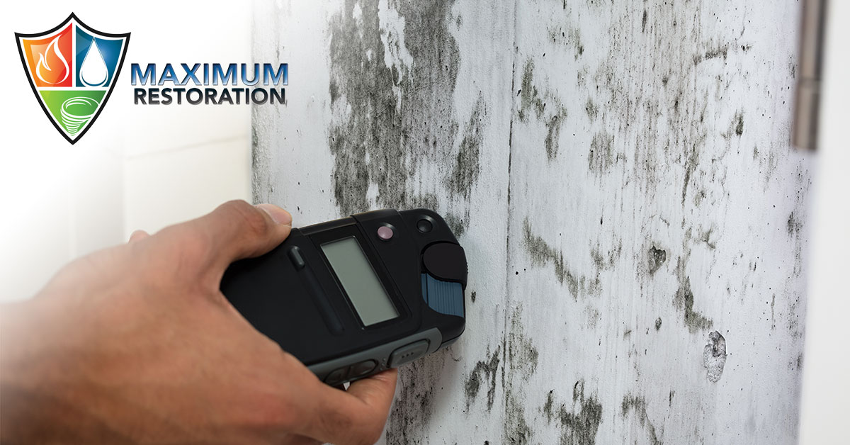 Professional Mold Remediation in Moraine, OH