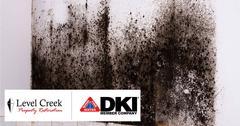 Mold Remediation in Braselton, GA