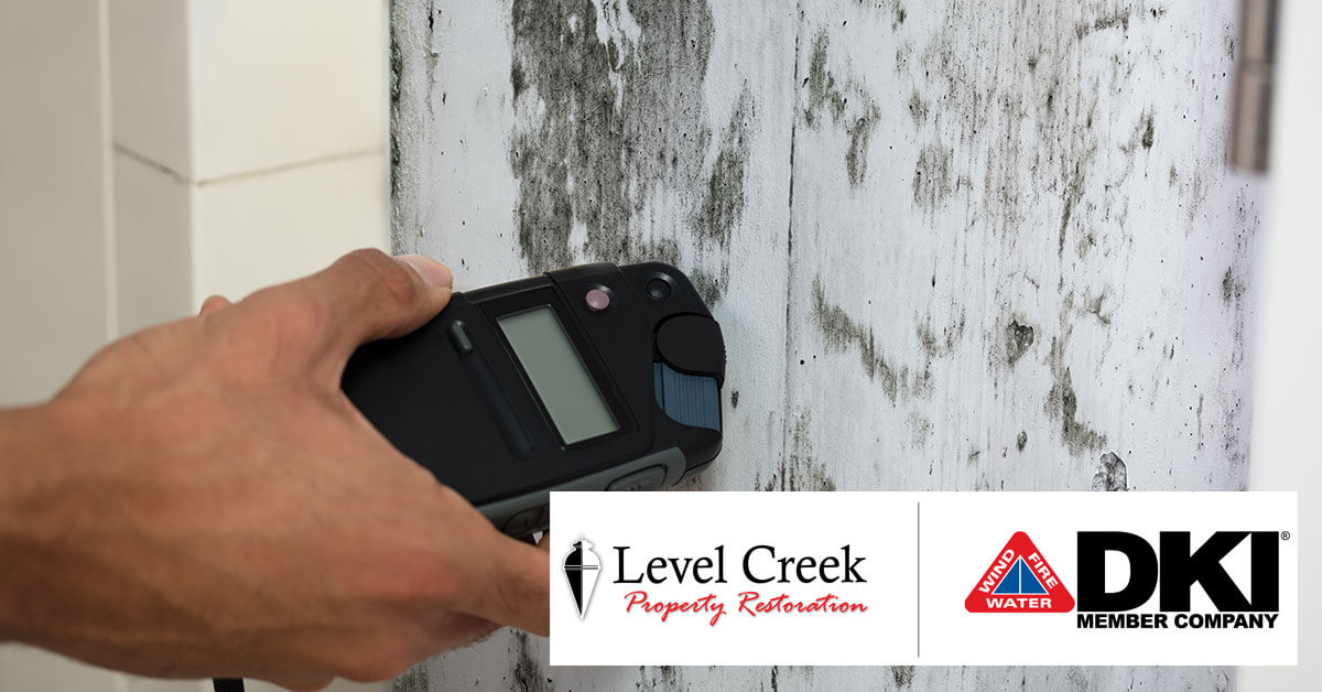 Mold Inspections in Grayson, GA