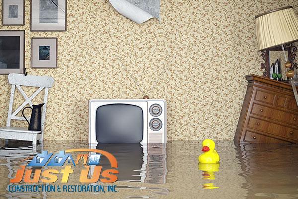 Flood Damage Cleanup in Edina, MN