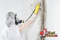 Mold Abatement in Florence, KY