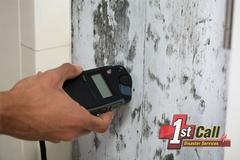 Mold Removal in Alexandria, KY
