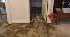 Sewer Odors in Your Home or Business and What To Do If You Have a Sewer or Septic System Backup…