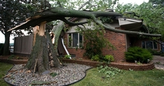 After Wind Damage, Your Insurance Company Requires That You Fix the Situation as Quickly As Possible to Prevent Further Damage!