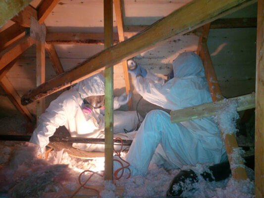 Licensed Mold Remediation Contractor in Covington, Erlanger, Florence, Fort Thomas, Independence, Newport, and the areas in and around Northern Kentucky and Cincinnati, OH