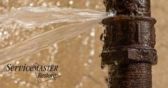 Water Cleanup in Schuyler, VA
