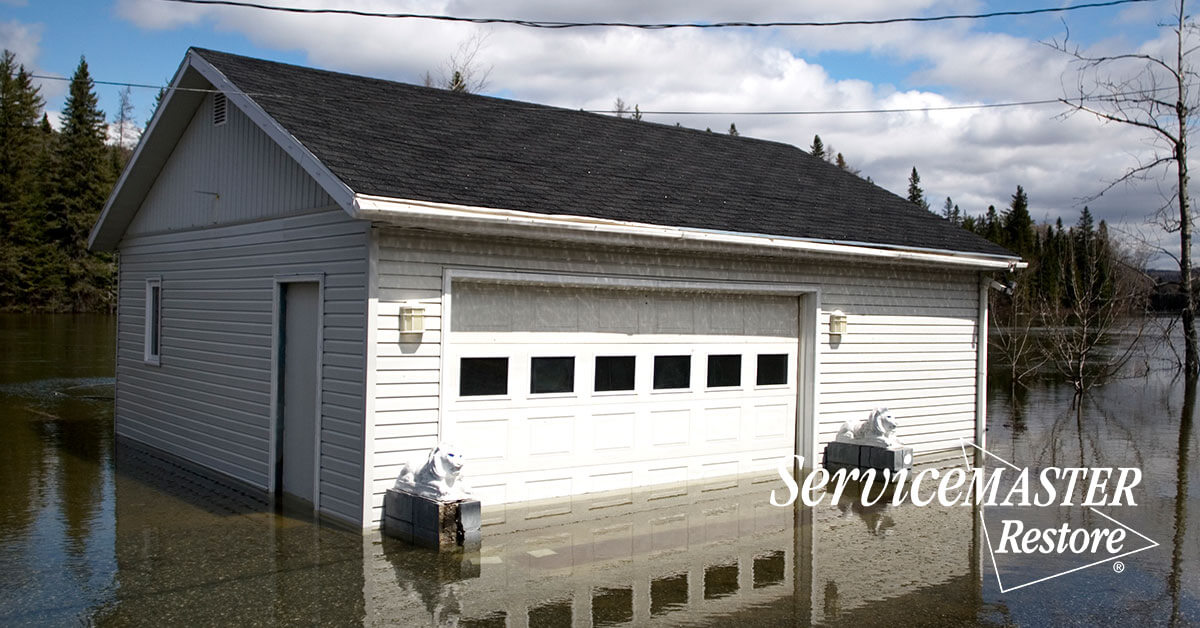 Flood Damage Cleanup in Science Hill, KY