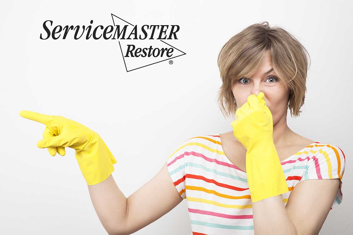 Commercial Odor Control in Kingston, KY