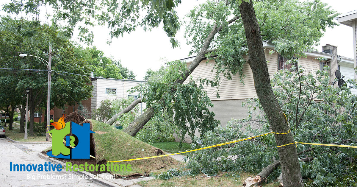 Storm Damage Repair and Debris Removal in Oakdale, TN