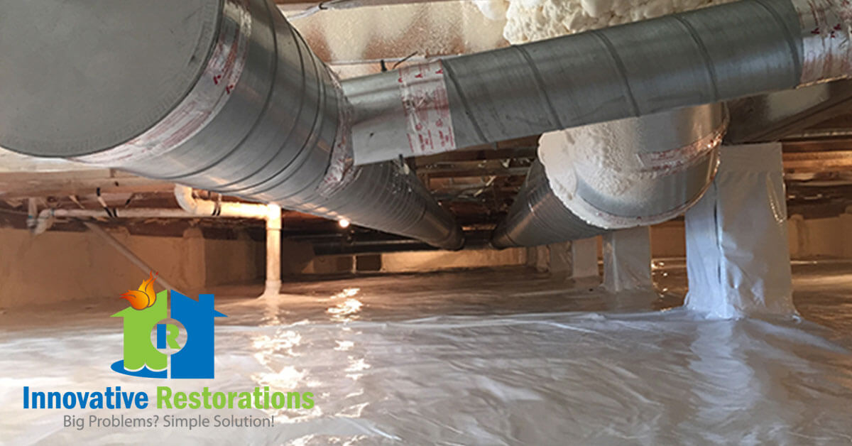 Crawl Space Mold Removal in Harriman, TN