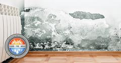 Mold Damage Restoration in Lemon Grove, CA