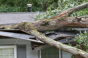 wind and storm damage restoration in