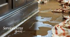IICRC-Certified Water Damage Cleanup in Broderick, CA