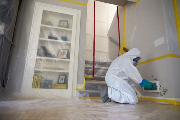 Mold Damage Restoration in Brooks, CA