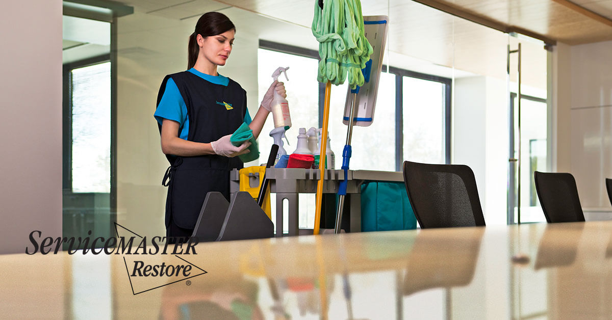 Business Cleaning Services in Guinda, CA