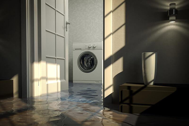 Water Damage Repair in ,