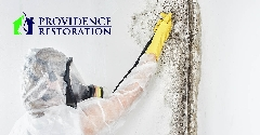 Mold Removal in Fairview, NC