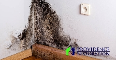 Mold Remediation in Wingate, NC
