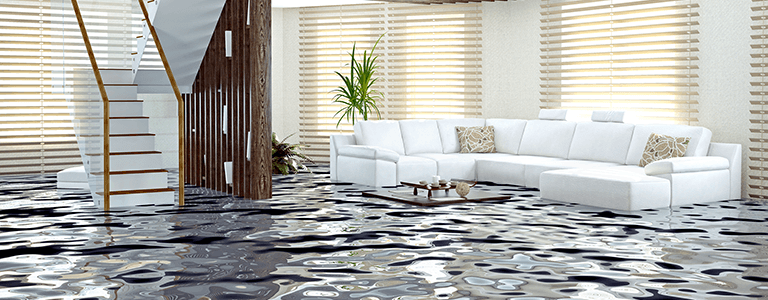Water Damage Restoration in Monroe, NC