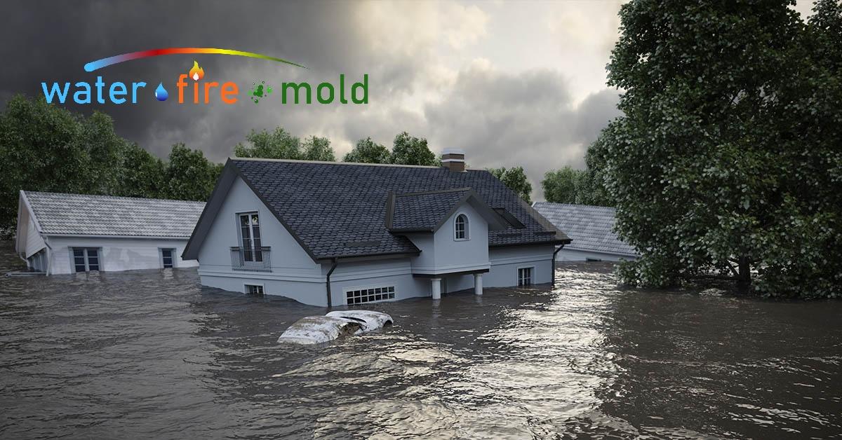 Water Mitigation in Rockwood, TN