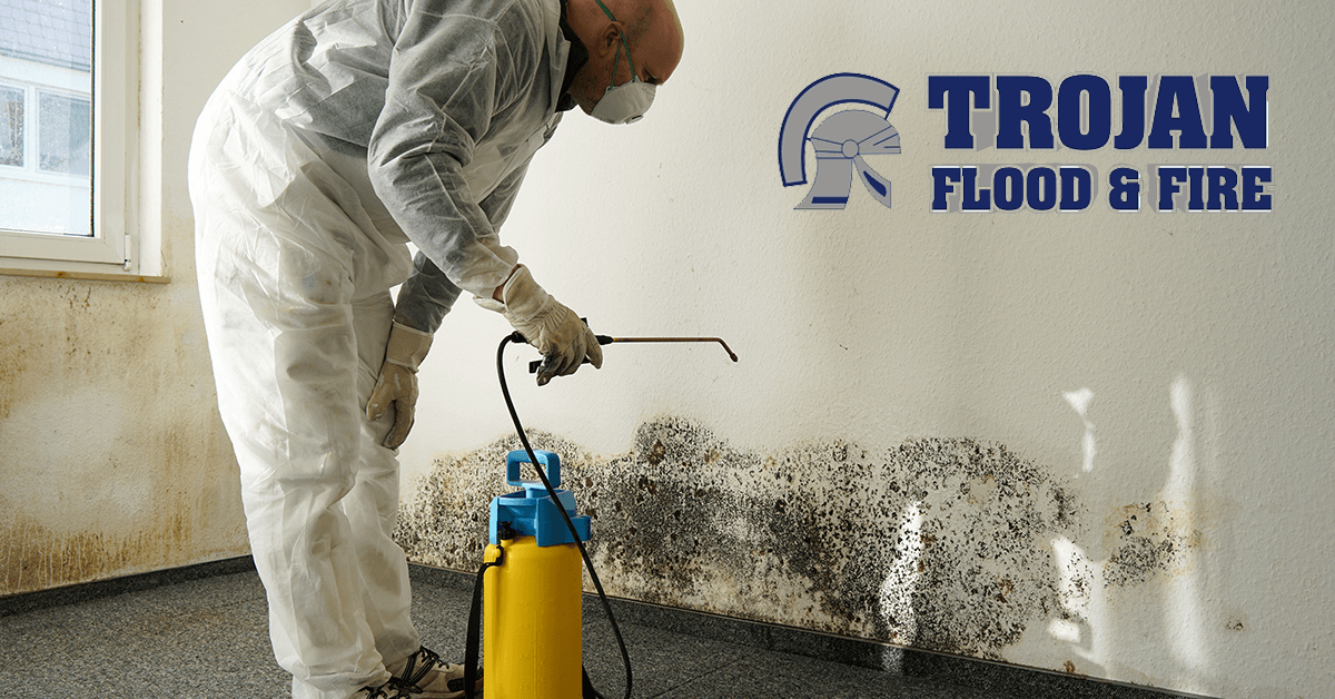 Trojan Flood & Fire Mold Damage restoration in Tinley Park IL