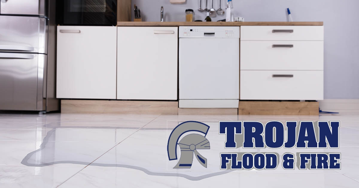 Water Damage Repair in Orland Park, IL