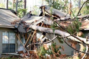storm damage restoration in chicago