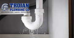 Water Leak Detection in Palatine IL