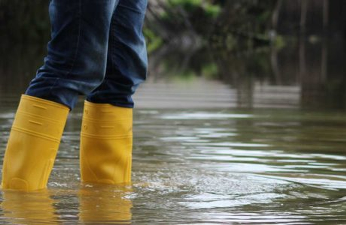 Flood and Water Tips