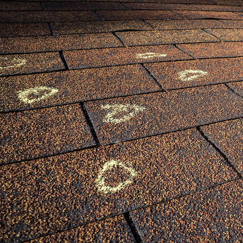 Roof Damage & Repair in Warren, MI