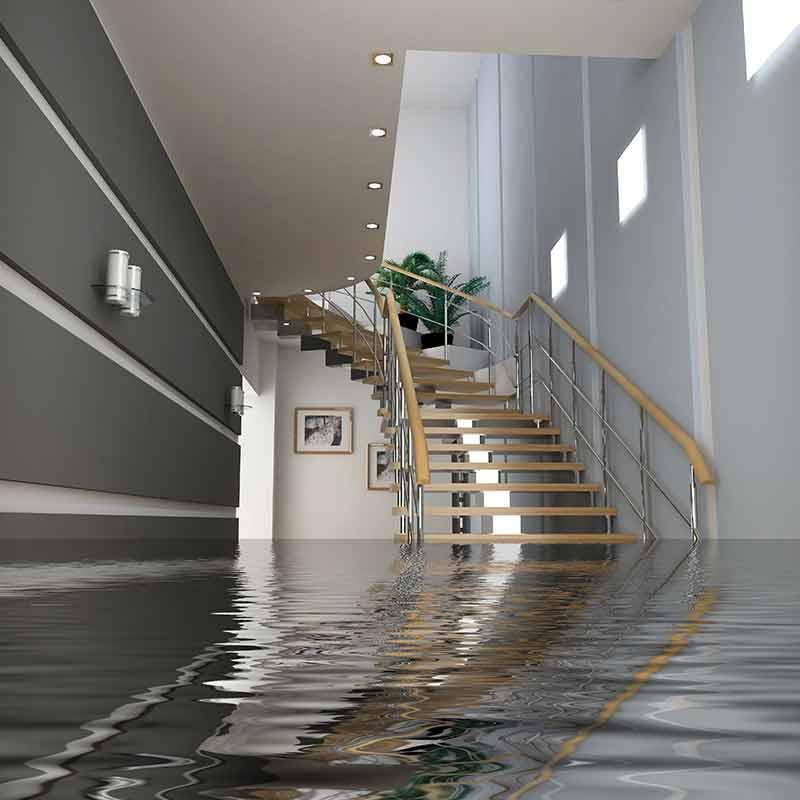 Water Damage in Warren, MI