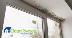 Mold Removal in Ellicott City, MD