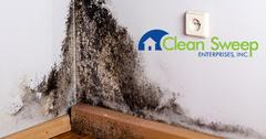 Mold Abatement in New Windsor, MD