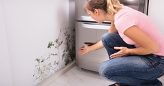 Is There Black Mold In Your House? 3 Common Black Mold Exposure Symptoms