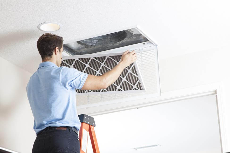Indoor Air Cleaning - Changing Your Air Filter Removes Mold Spores and Other Pollutants
