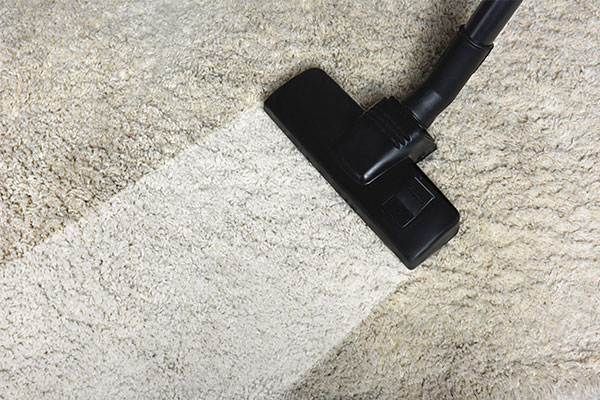 Professional Carpet Cleaning Services in Idaho