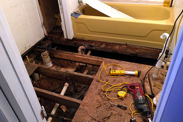 Idaho Mold Foundation Repair