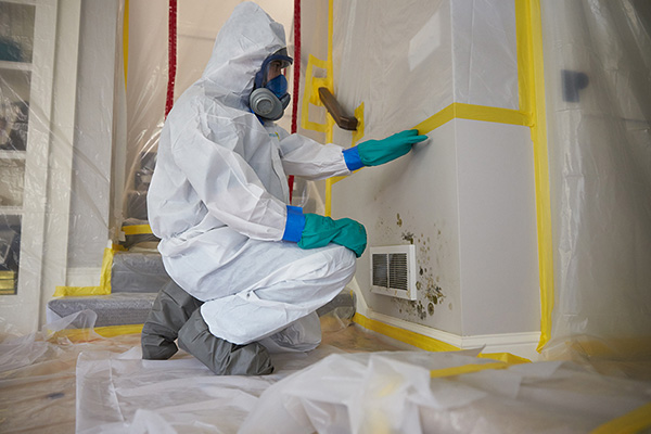 Mold Remediation in Lynchburg, VA