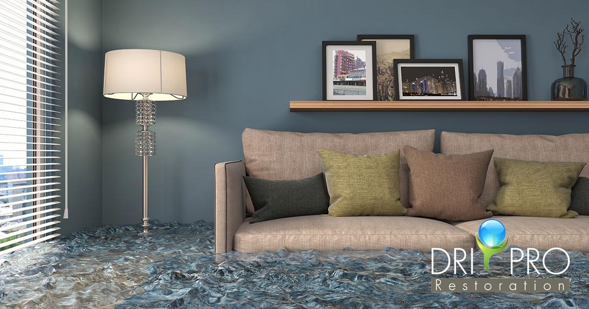 Professional Flood Damage Cleanup in Destin, FL