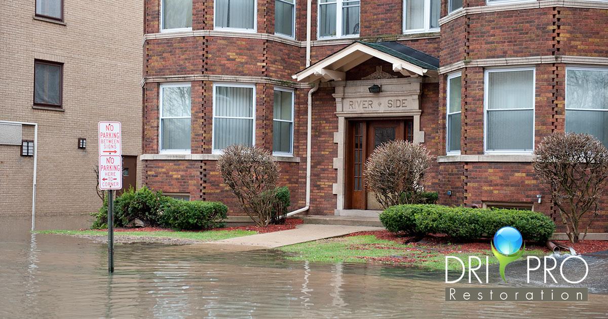 Flood Damage Mitigation in Walton County, FL