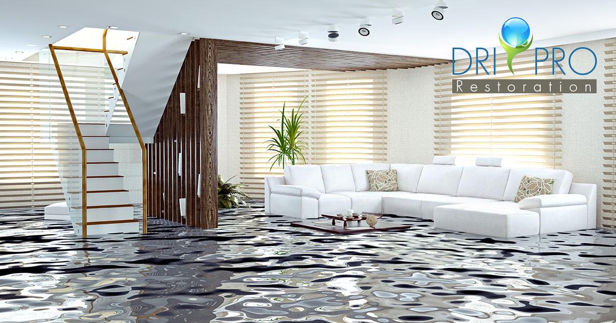 Professional Water Damage Repair in Panama City, FL