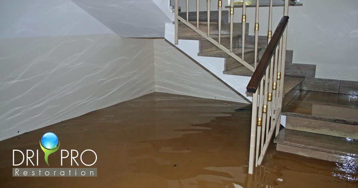 Water Damage Repair in Okaloosa County, FL