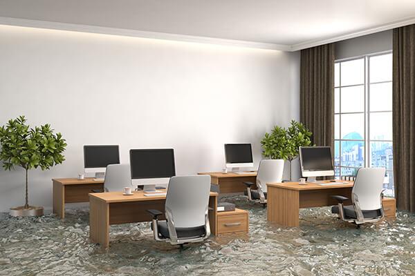 Flood Damage Cleanup in Seaside, FL