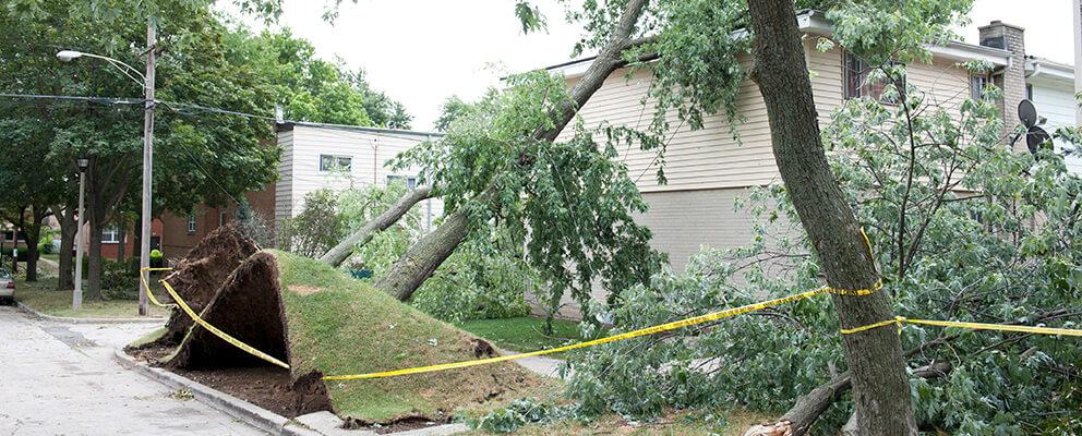 Storm Damage Repair in Boston, MA
