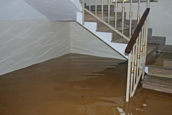 Flooded Basement in Boston